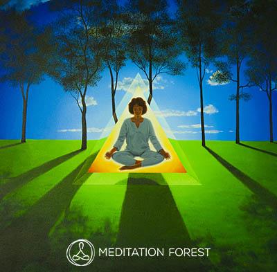 Meditation Forest isbm image 400